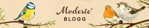Modesteblogg